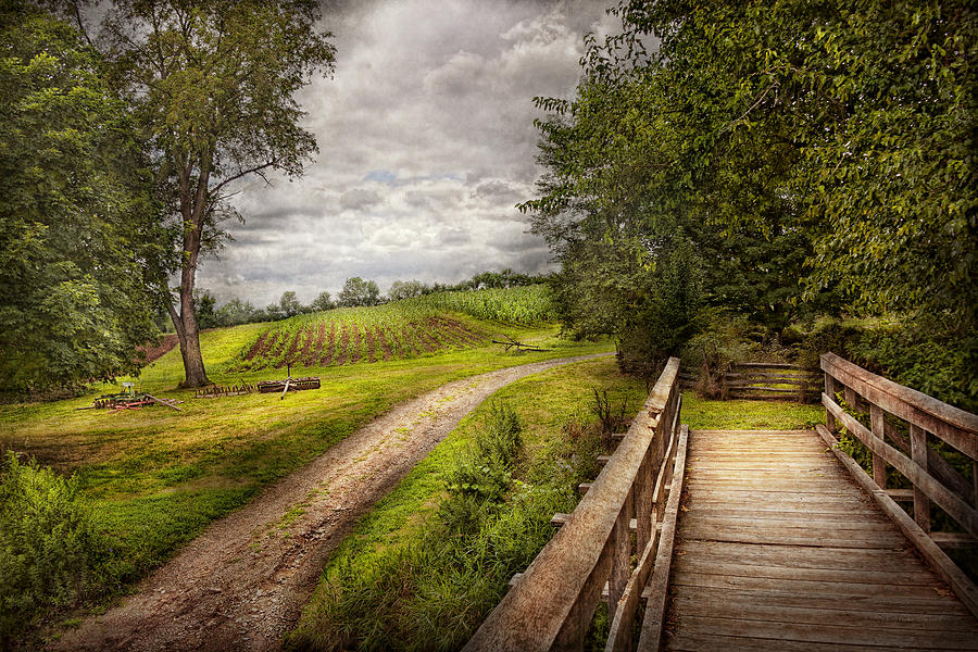Savad Photograph - Farm - Landscape - Jersey Crops by Mike Savad