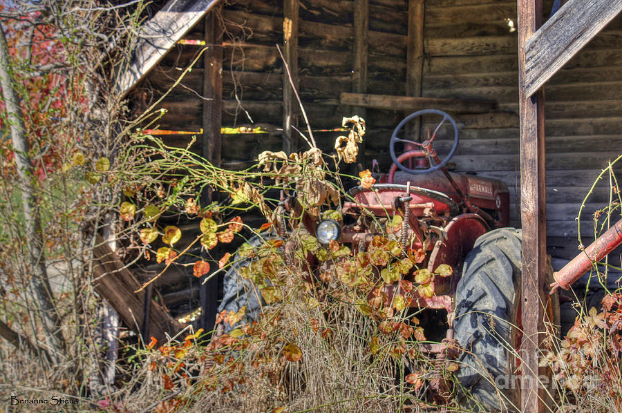 Farmall Find Photograph