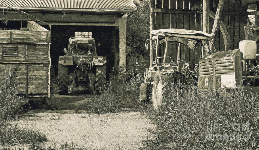 Farmers Delight Photograph