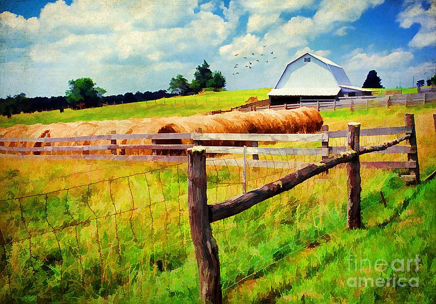 Farming Photograph