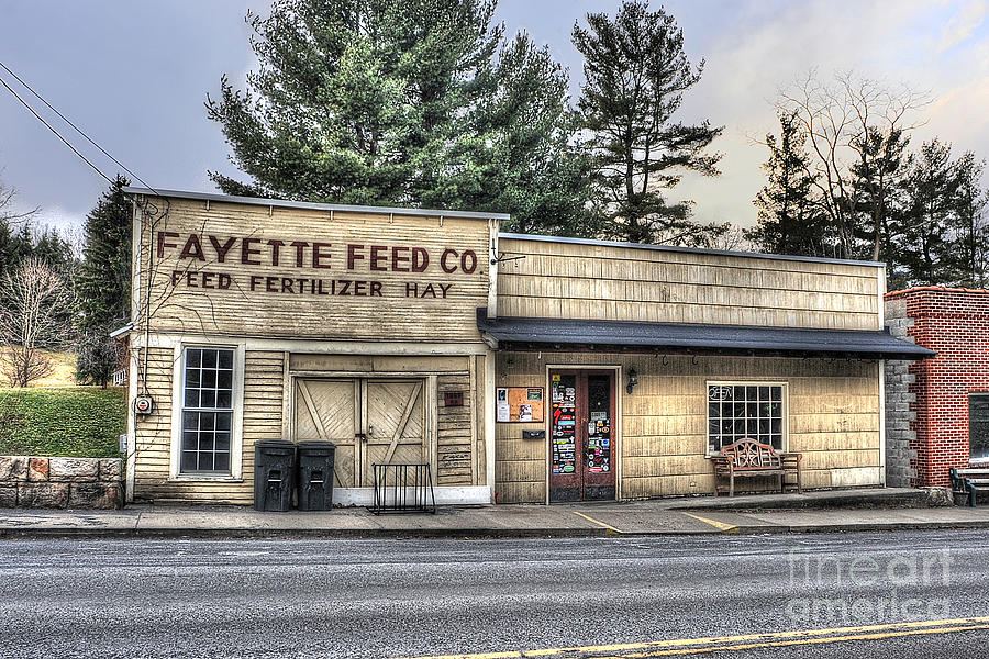 Fayette Feed Co Photograph