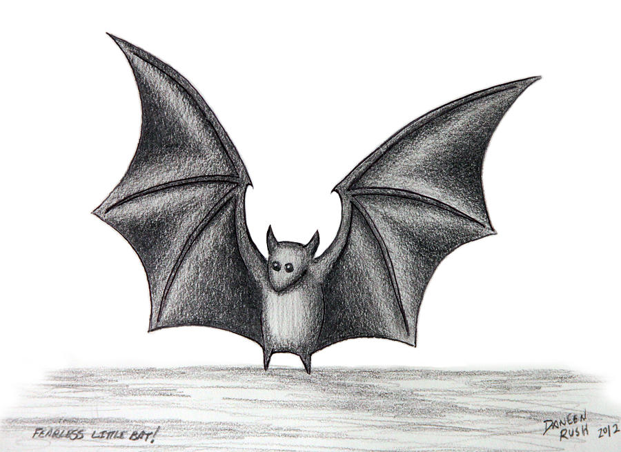 The gallery for halloween bat drawing for How to draw a small bat