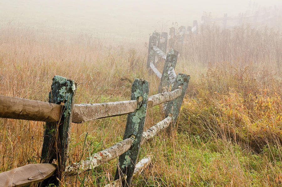 Fence In Fog Photograph  - Fence In Fog Fine Art Print