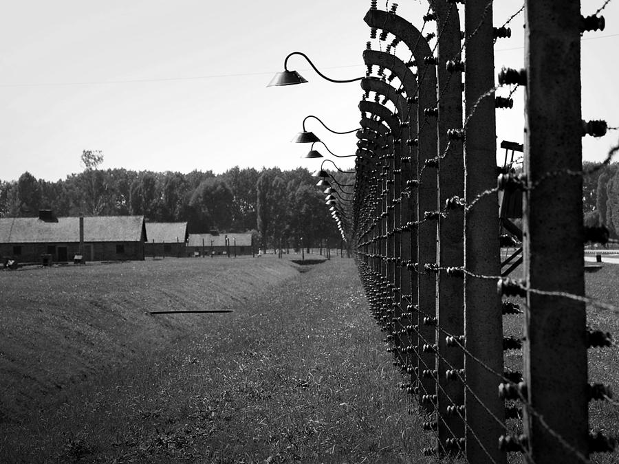 Fence Of Death Photograph  - Fence Of Death Fine Art Print