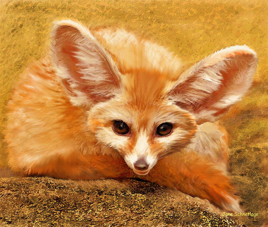 Fennec Fox Digital Art  - Fennec Fox Fine Art Print