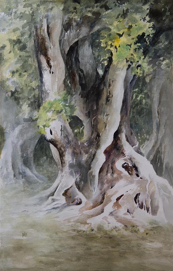 Ficus Aurea Painting