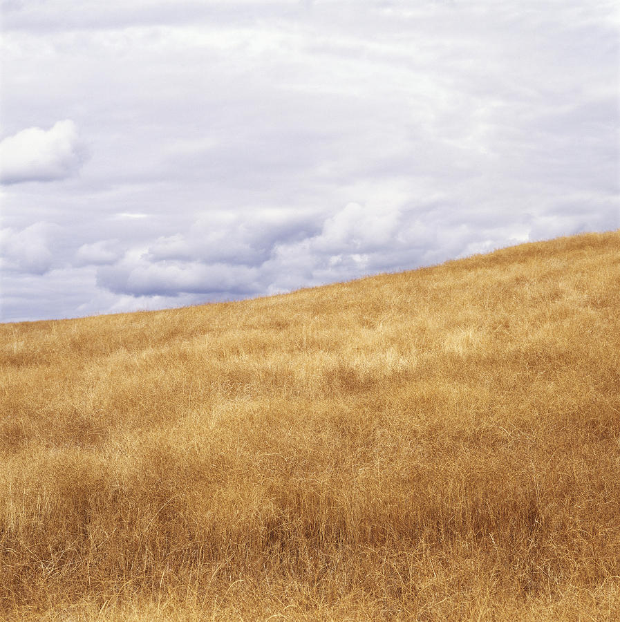 Field And Sky Near Rock Creek, South Photograph  - Field And Sky Near Rock Creek, South Fine Art Print
