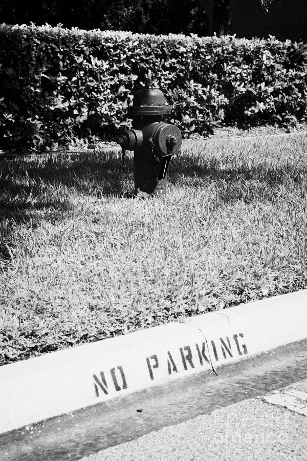 Fire Hydrant No Parking Curb In Residential Area Of Celebration Florida Usa Photograph  - Fire Hydrant No Parking Curb In Residential Area Of Celebration Florida Usa Fine Art Print