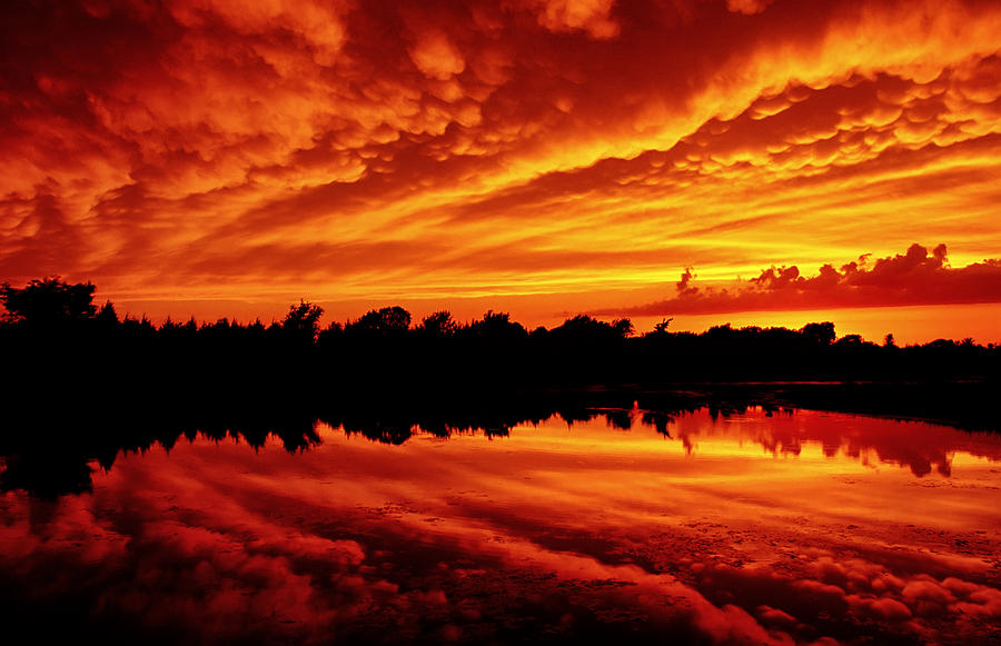 Fire In The Sky Photograph  - Fire In The Sky Fine Art Print