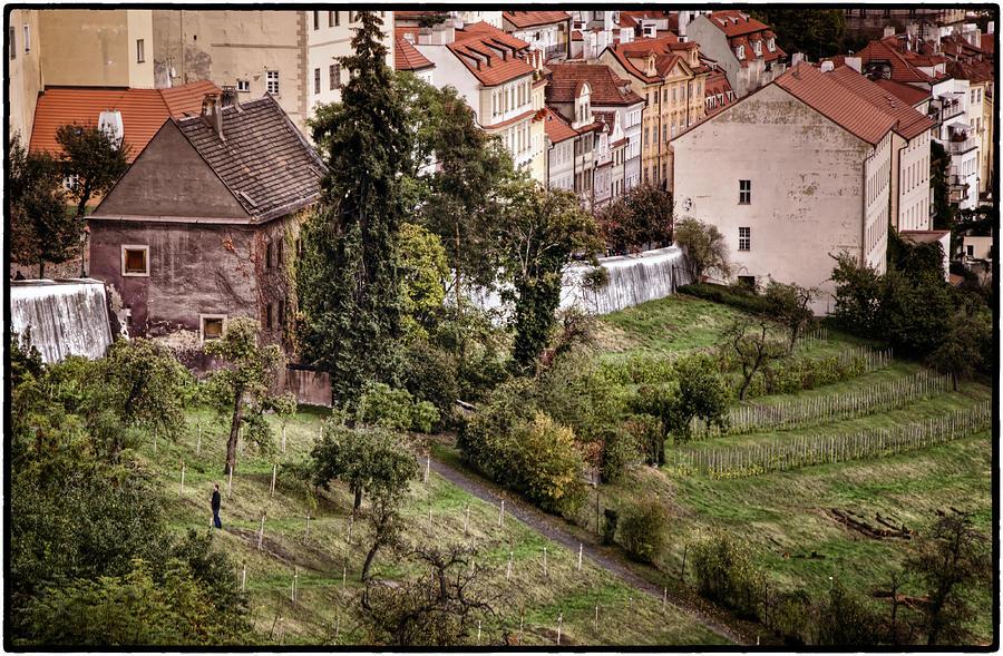 Firenze In Prague Photograph