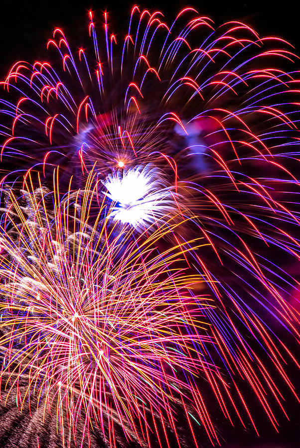 Fireworks 2008 Series 4 Photograph