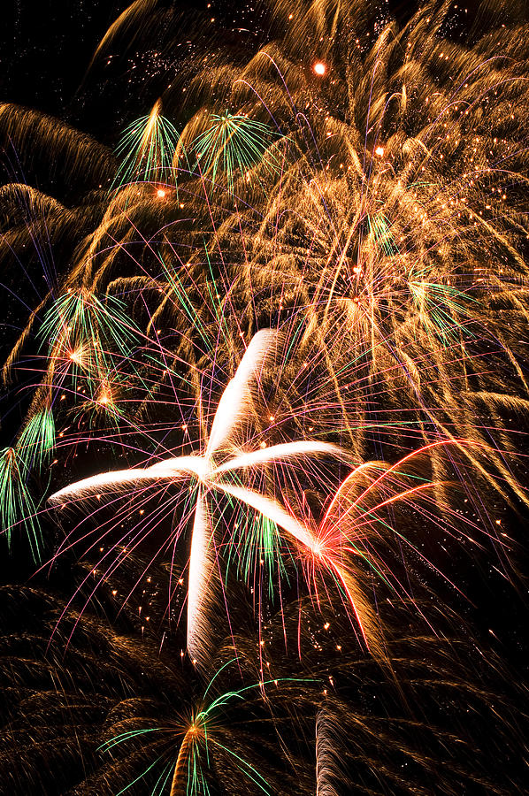 Fireworks Exploding Everywhere Photograph  - Fireworks Exploding Everywhere Fine Art Print