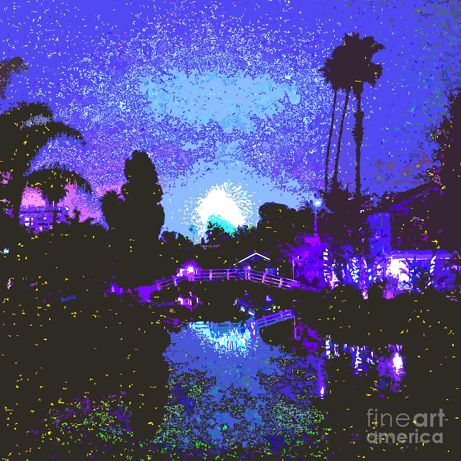 Fireworks Venice California Photograph