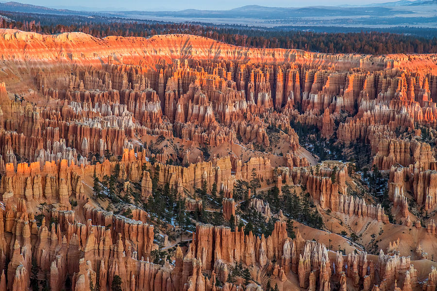 Bryce Canyon Photograph - First Light In Bryce by Pierre Leclerc Photography