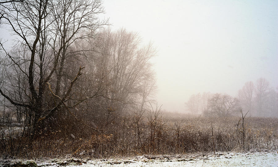 First Snow Of Winter Photograph  - First Snow Of Winter Fine Art Print