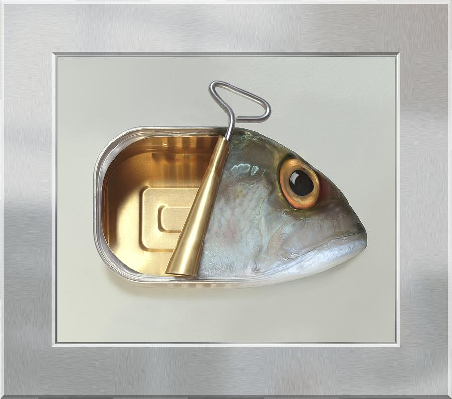 Fish Can - Acrylic Print In A Unique Virtual Frame Photograph  - Fish Can - Acrylic Print In A Unique Virtual Frame Fine Art Print