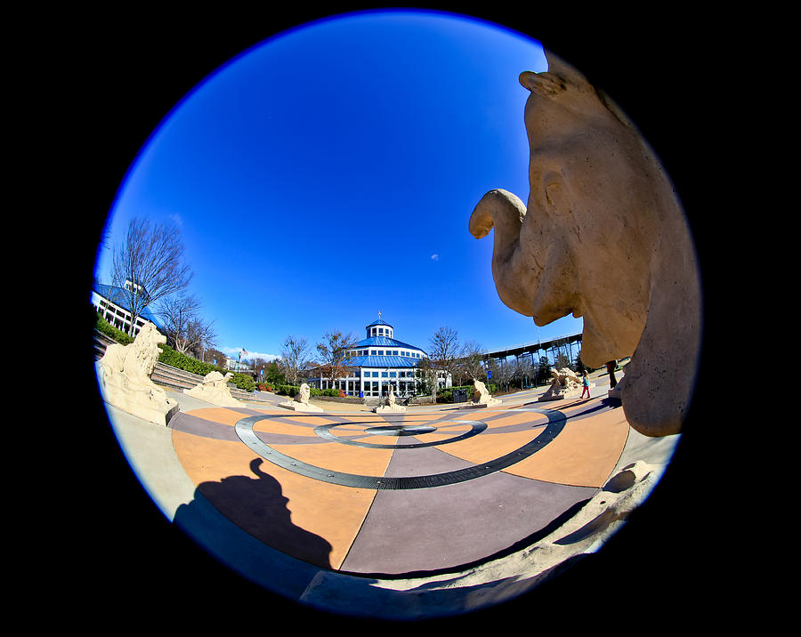 Fish Eye View Of Coolidge Park Photograph