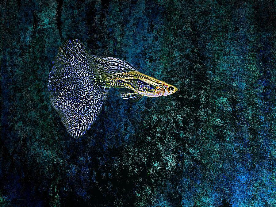 Fish In Blue Pointillism Digital Art
