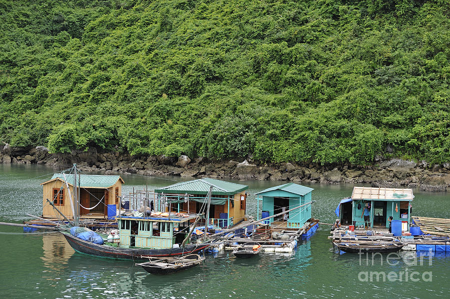 Fisherman Floatting Houses Photograph  - Fisherman Floatting Houses Fine Art Print