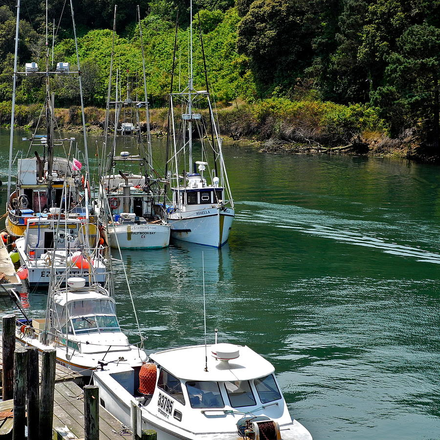 Fishing boats in ft bragg harbor photograph by kirsten giving for Fort bragg fishing charters