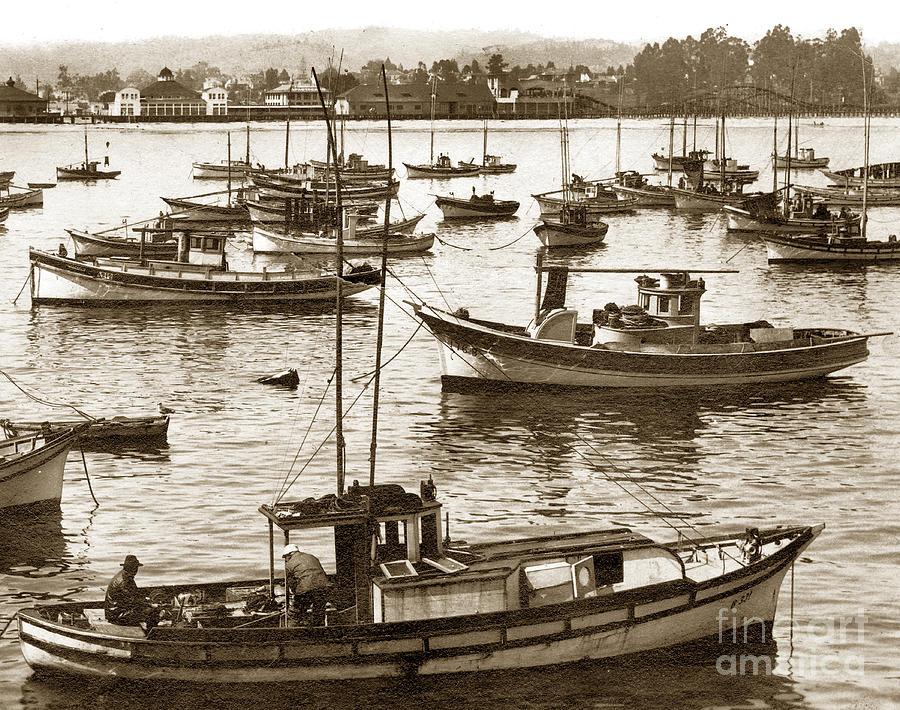 Fishing fleet in santa cruz harbor california circa 1920 for Santa cruz fishing