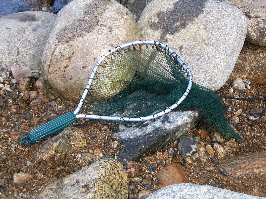 Rocks Photograph - Fishing Net by Kerri Mortenson
