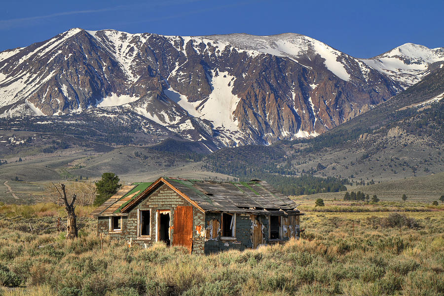Fixer Upper With A View Photograph