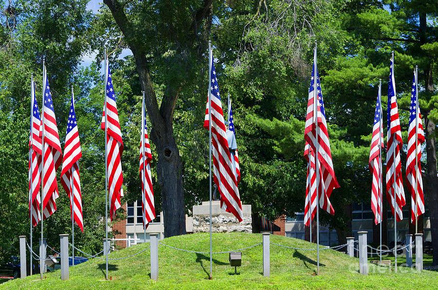 Flag - Illinois Veterans Home - Luther Fine Art Photograph