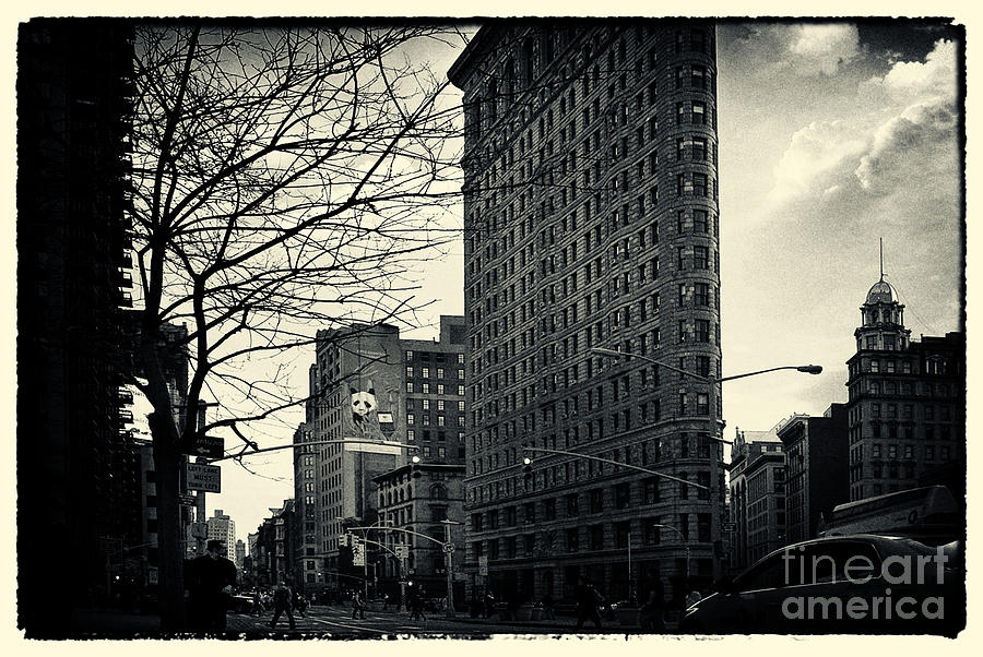 Flat Iron Building Fifth Avenue And Broadway Photograph