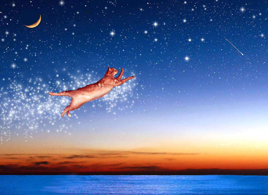 Flight To Sagittarius Digital Art