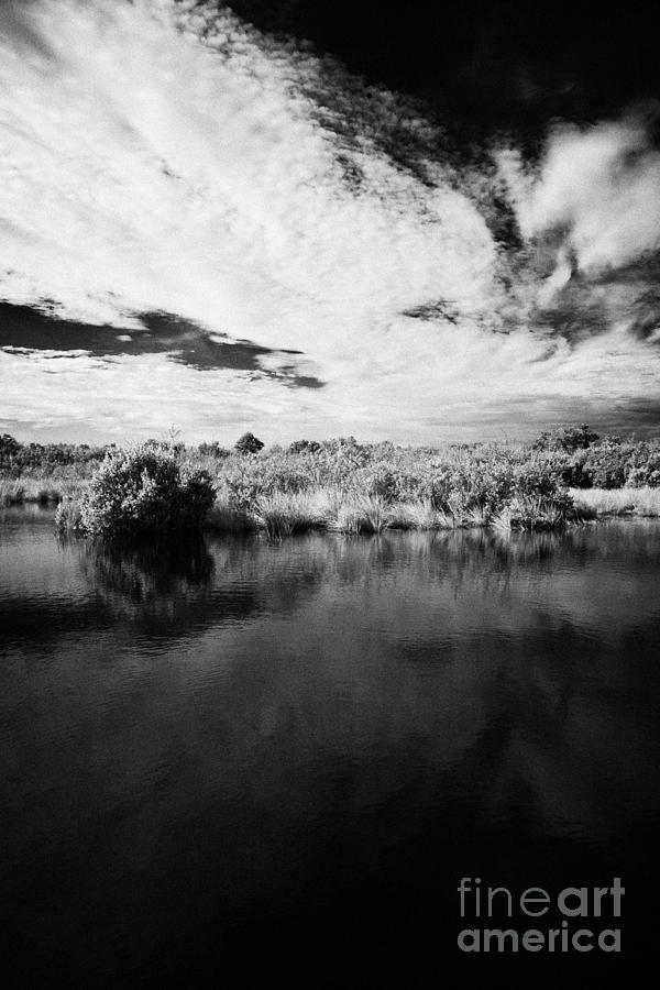 Florida Photograph - Flooded Grasslands And Mangrove Forest In The Florida Everglades by Joe Fox