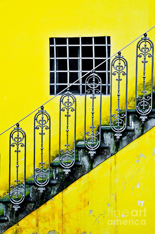 Florence Yellow Photograph  - Florence Yellow Fine Art Print