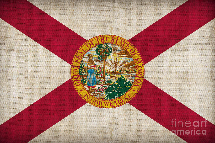 Florida Painting - Florida State Flag by Pixel Chimp