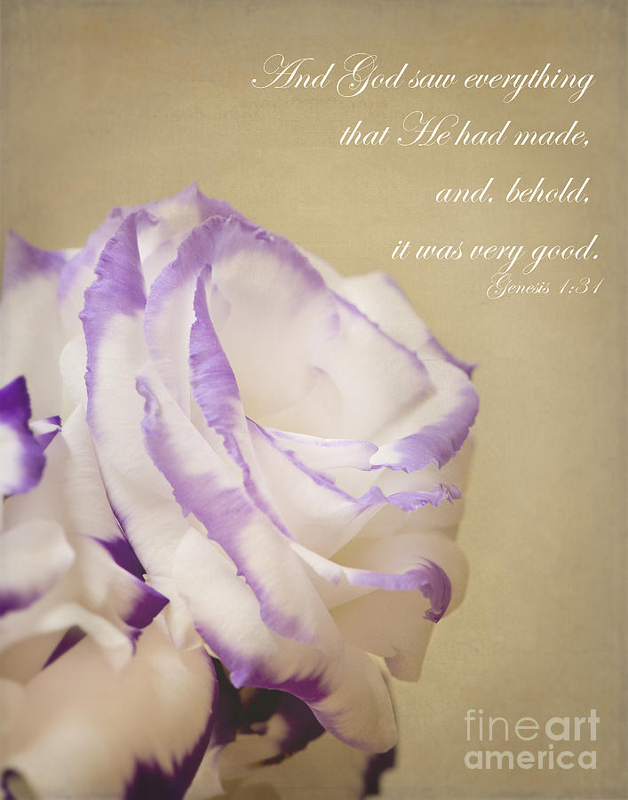 Bible Quotes Flower Paintings Quotesgram