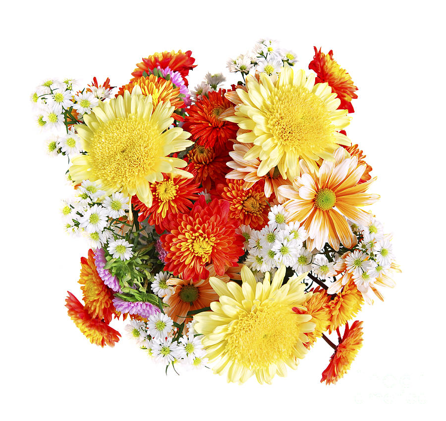 Flower Bouquet Photograph