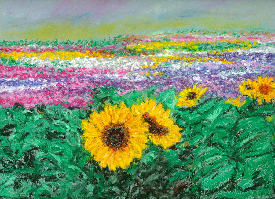 Flower Farm In The Central Valley Pastel
