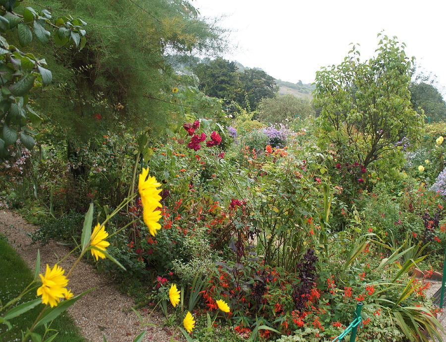 Flower Garden II Photograph