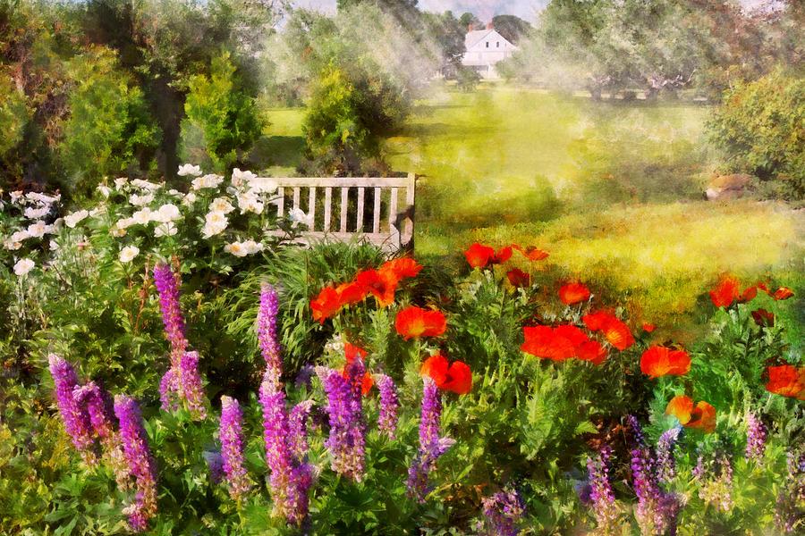 Flower - Poppy - Piece Of Heaven Photograph