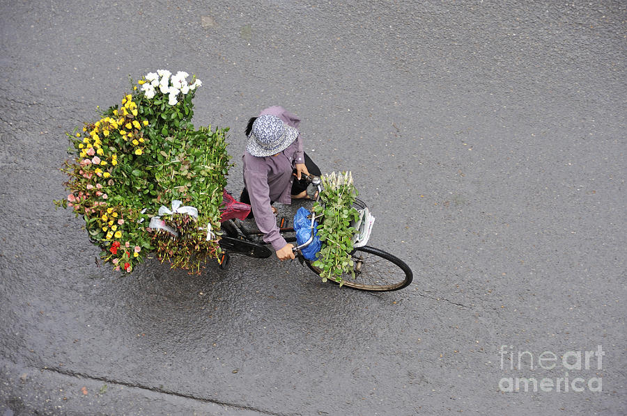 Flower Seller In Street Of Hanoi Photograph  - Flower Seller In Street Of Hanoi Fine Art Print