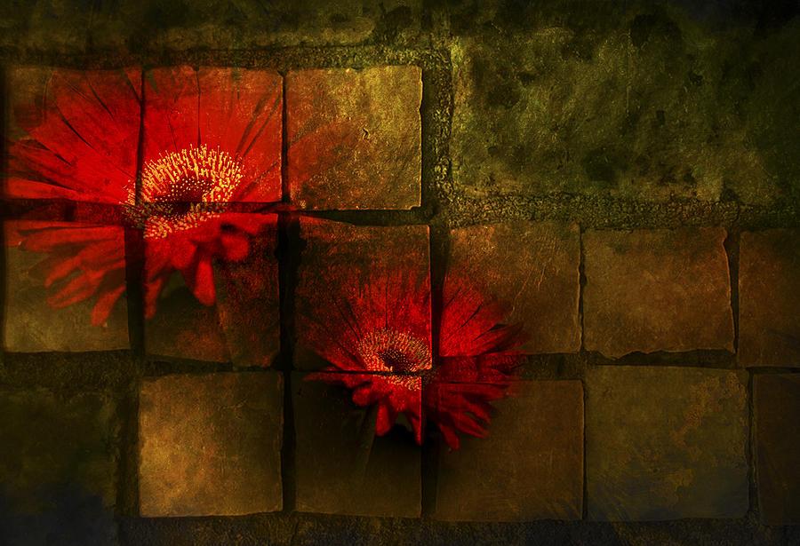 Flower Tiles Photograph