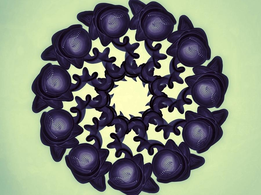 Flowers Of Algebra Digital Art