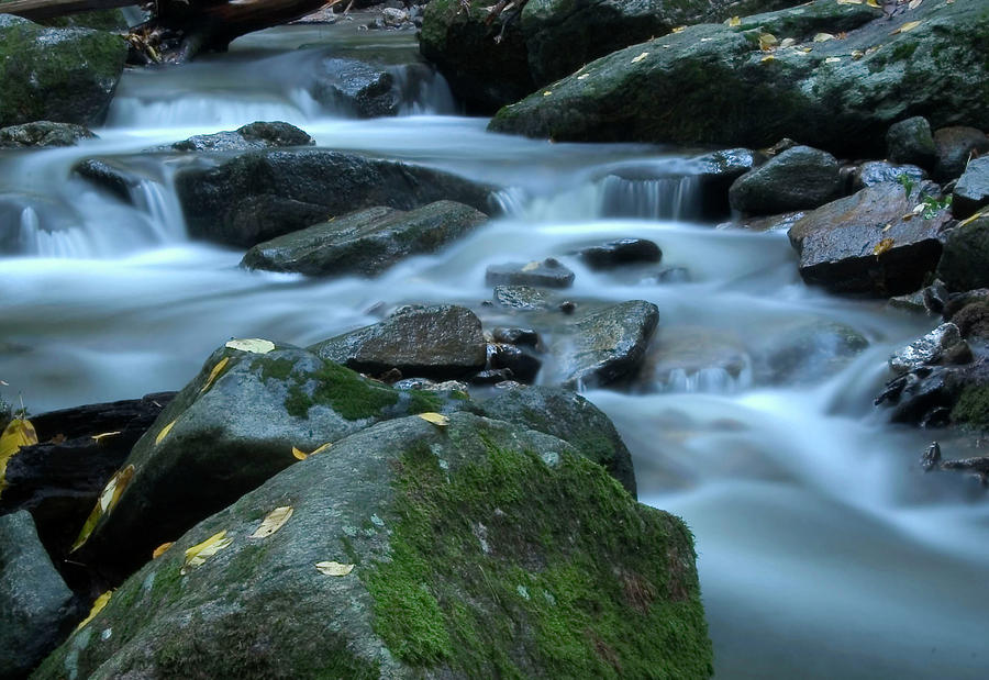 Stream Photograph - Flowing Spirit by Karol Livote