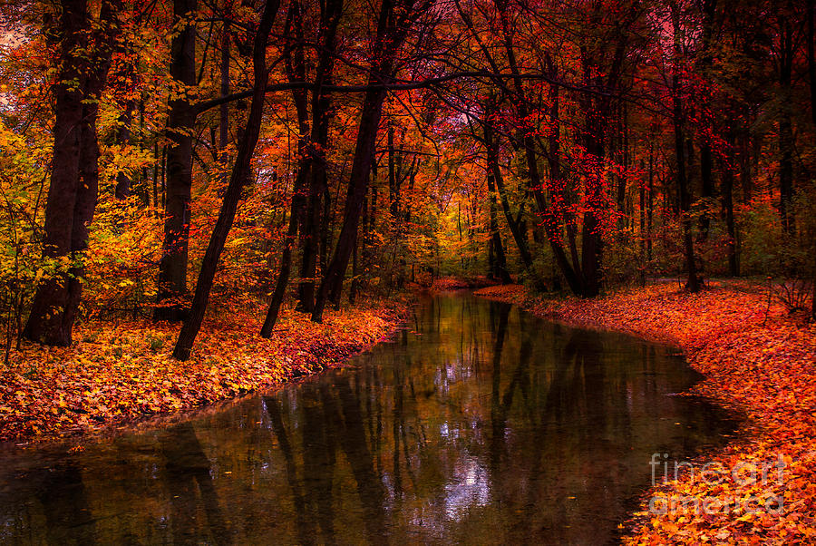 Flowing Through The Colors Of Fall Photograph