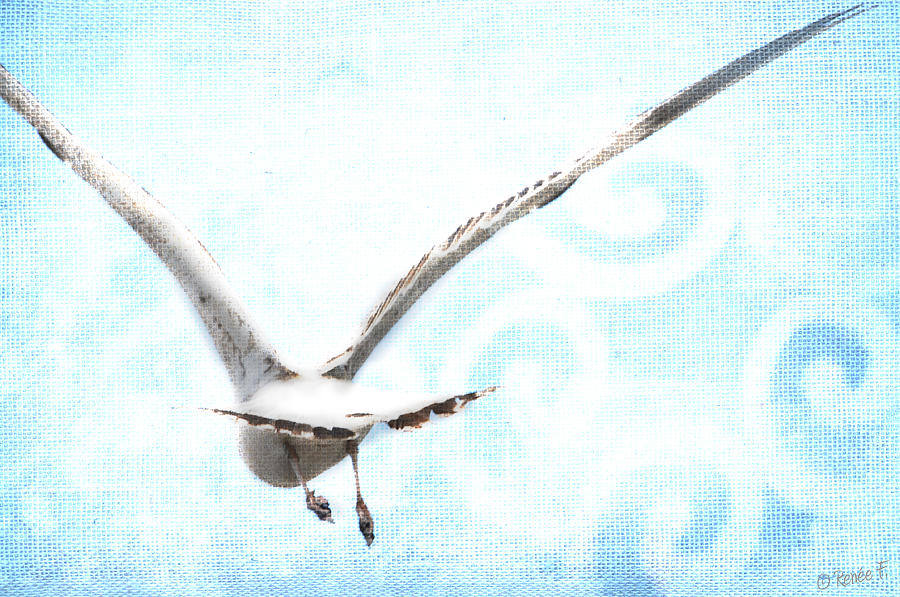 Fly Away Digital Art