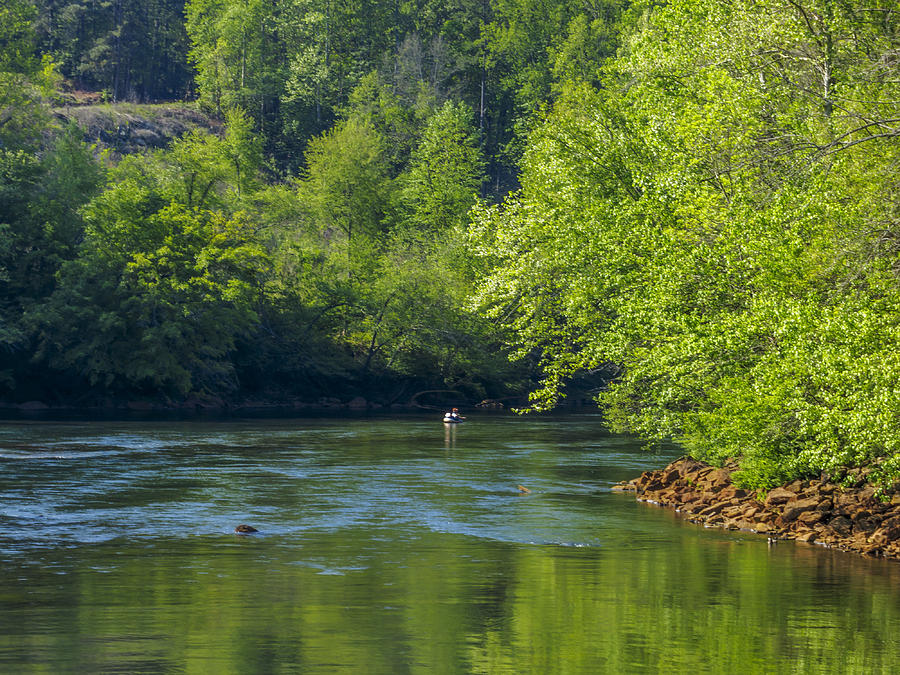 Fly fishing on the chattahoochee river photograph by steve for Chattahoochee river fishing