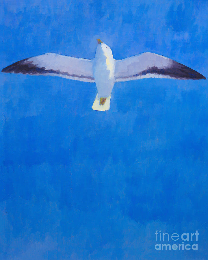 Flying Seagull Painting  - Flying Seagull Fine Art Print