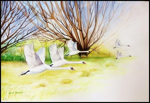 Swans Painting - Flying Swans by Sonali Sengupta