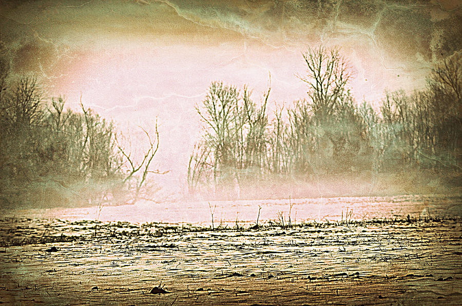 Landscape Photograph - Fog Abstract 1 by Marty Koch