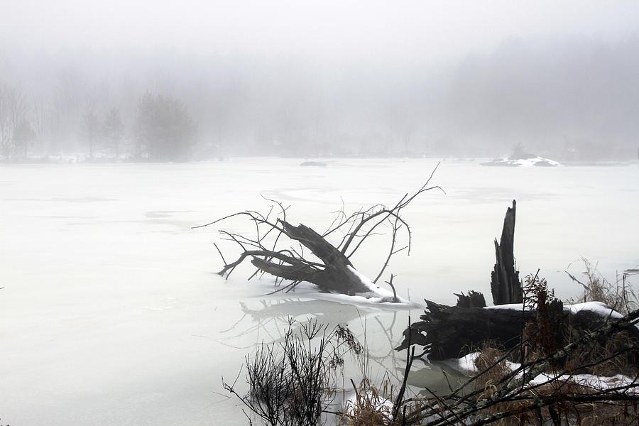 Fog On The Pond Photograph