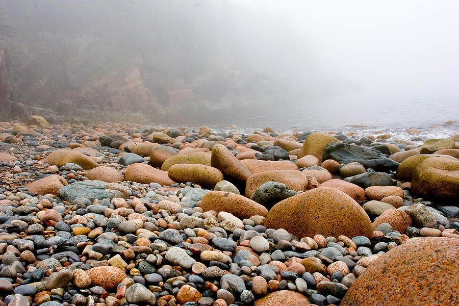 Foggy Frosting On The Rocks Photograph